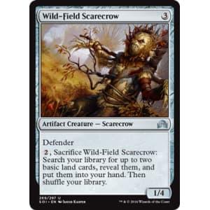 Wild-Field Scarecrow