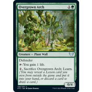 Overgrown Arch