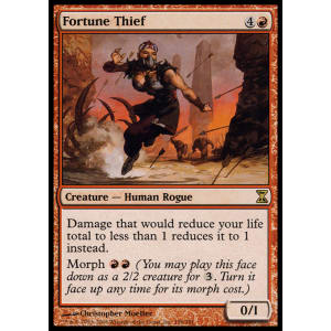 Fortune Thief