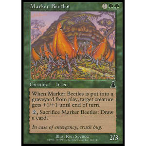 Marker Beetles