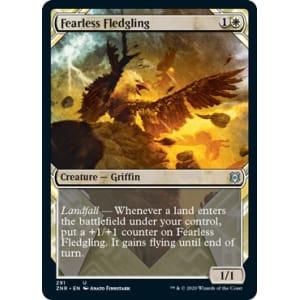 Fearless Fledgling