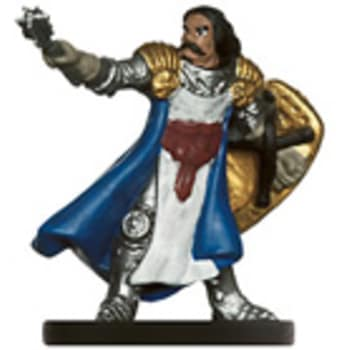 Male Human Cleric - 15