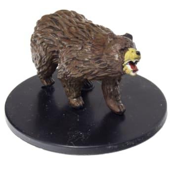 Brown Bear - 25