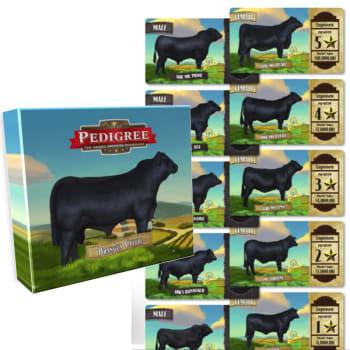 Pedigree Deck - Brangus Cattle
