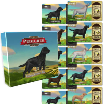 Pedigree Deck - Labrador Dog