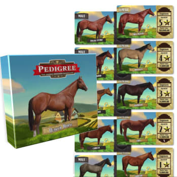 Pedigree Deck - Quarter Horse