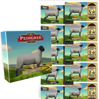 Pedigree Deck - Suffolk Sheep