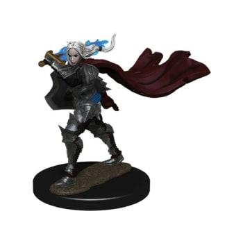 Pathfinder Battles: Premium Painted Figure - Elf Champion Female