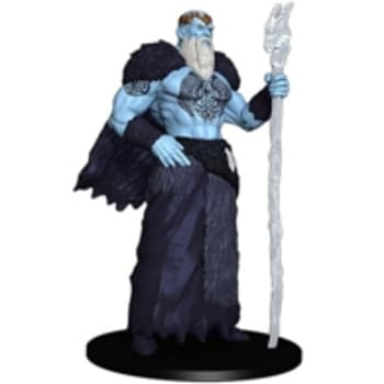 Frost Giant Ice Mage - 28