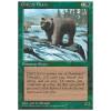Grizzly Bears Thumb Nail