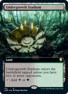 Undergrowth Stadium