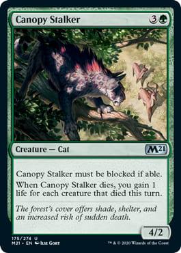 Canopy Stalker
