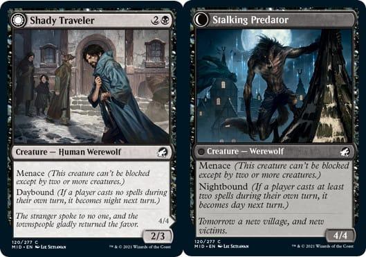 Shady Traveler // Stalking Predator