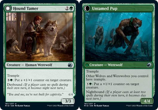 Hound Tamer // Untamed Pup