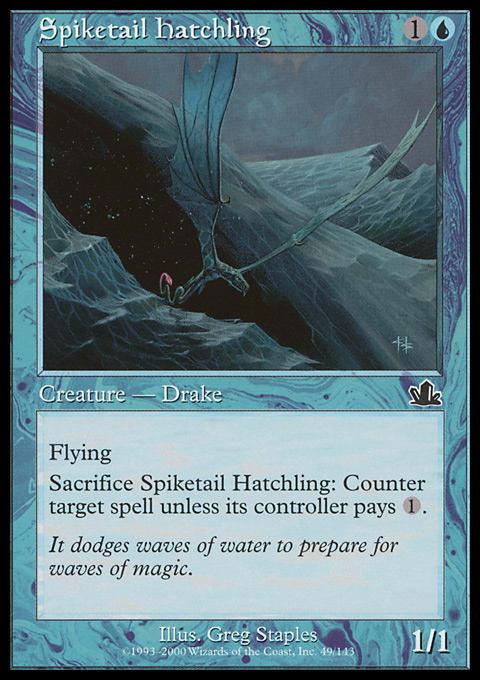 Spiketail Hatchling