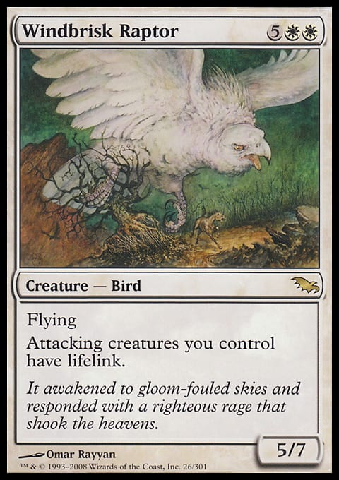 Windbrisk Raptor