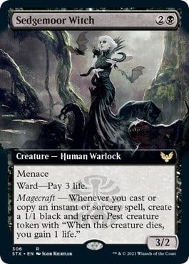 Sedgemoor Witch