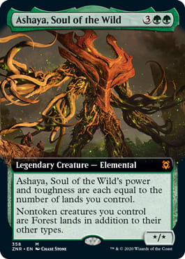 Ashaya, Soul of the Wild