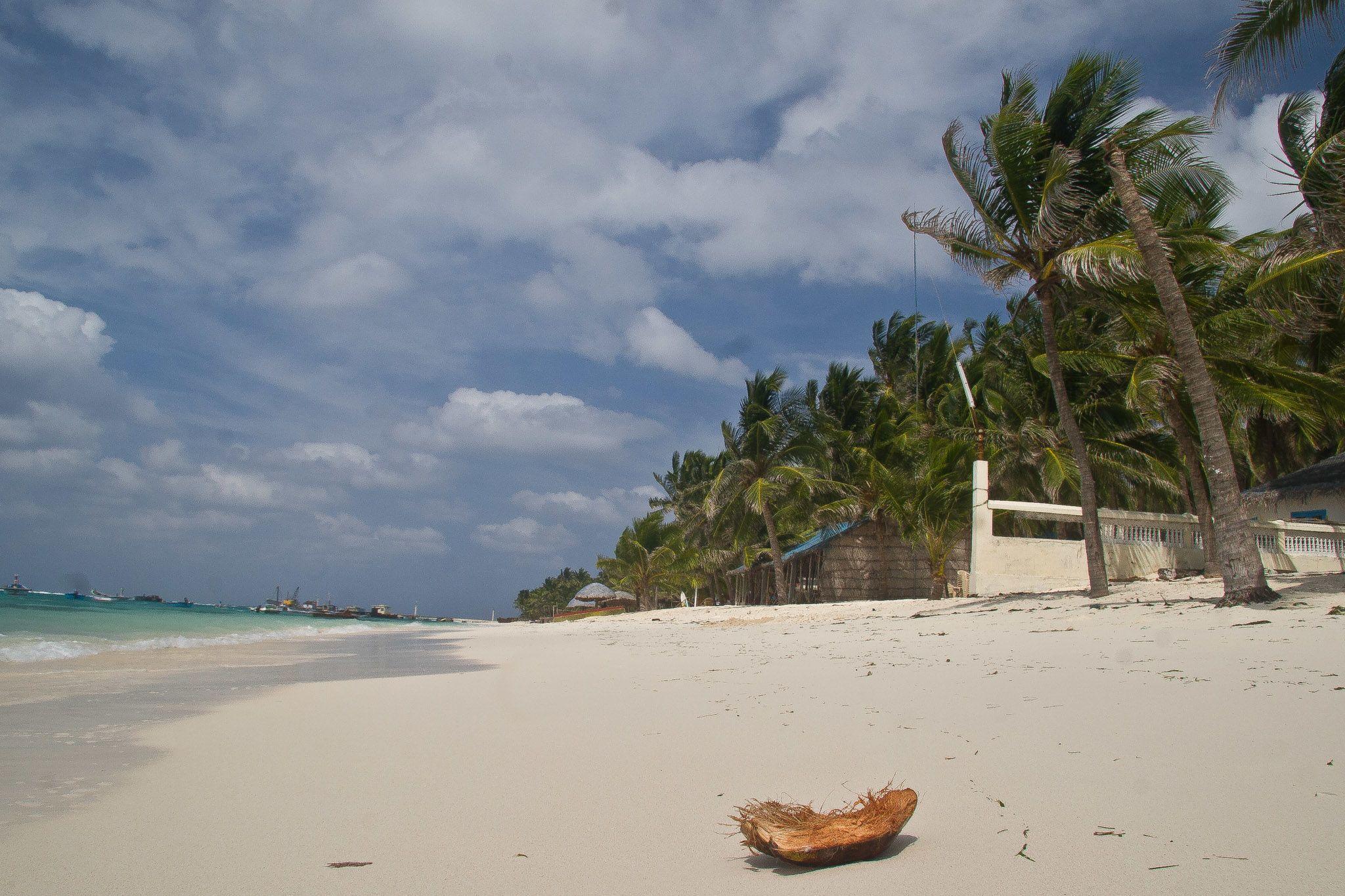 Coconut on the Tideline. (Mike Prince via Flickr)