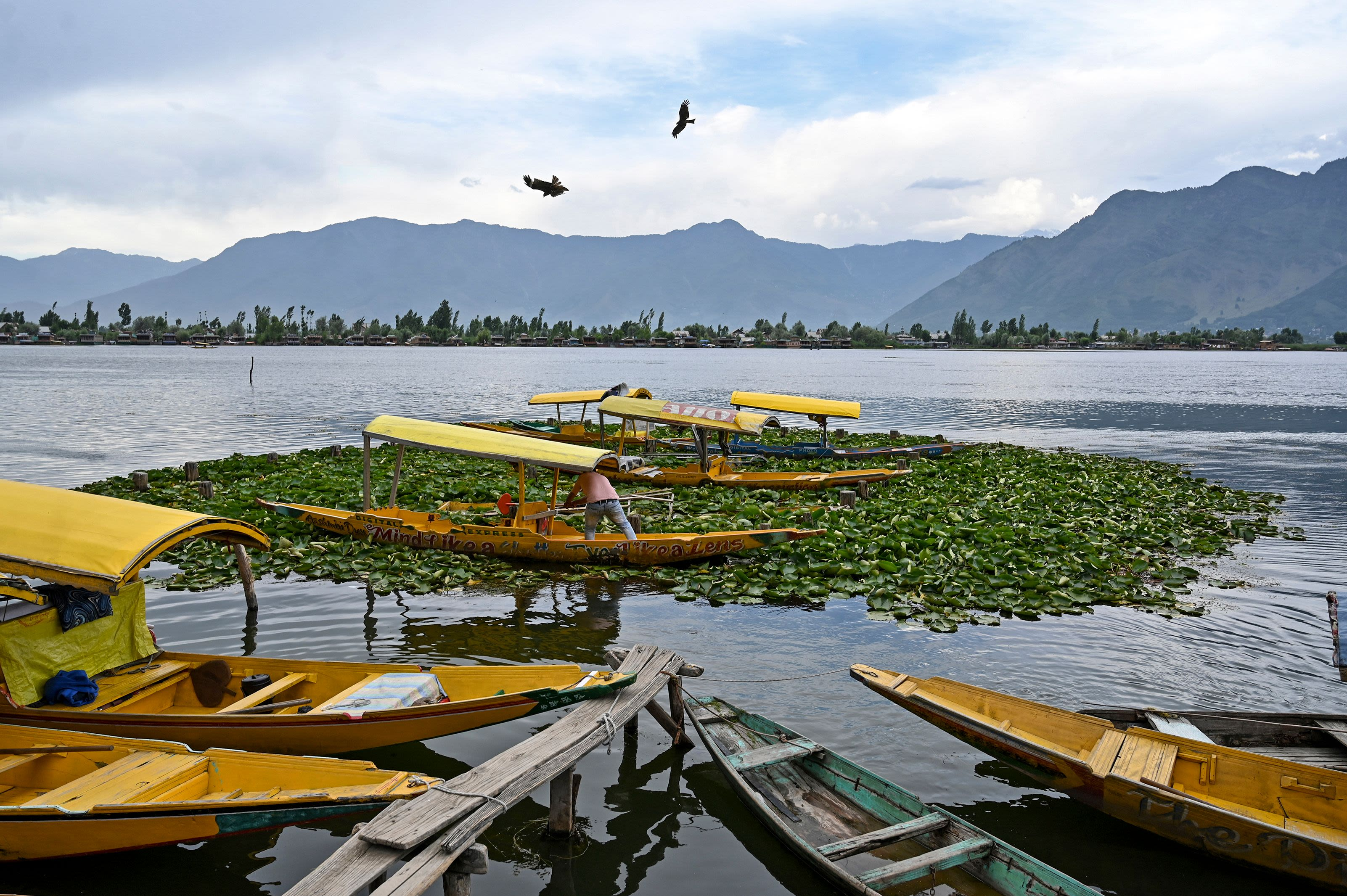 A Kashmiri boatman stands on his boat as he waits for customers in the Dal lake in Srinagar on June 26, 2019. (Tauseef MUSTAFA / AFP via Getty Images)