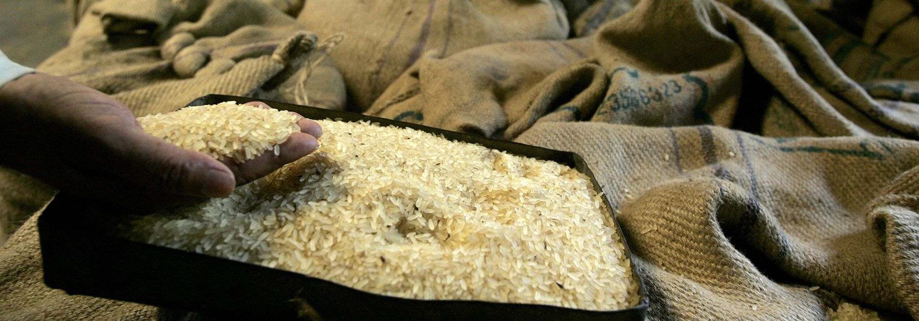 A rice mill worker checks the final production quality from a specimen kept beside of rice filled sacks at a mill in Midnapore. (DESHAKALYAN CHOWDHURY/AFP/Getty Images)