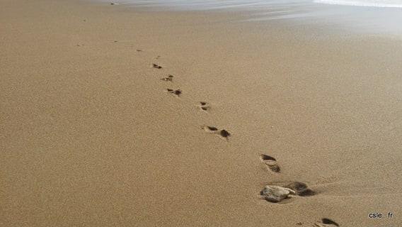 sable d'olonne