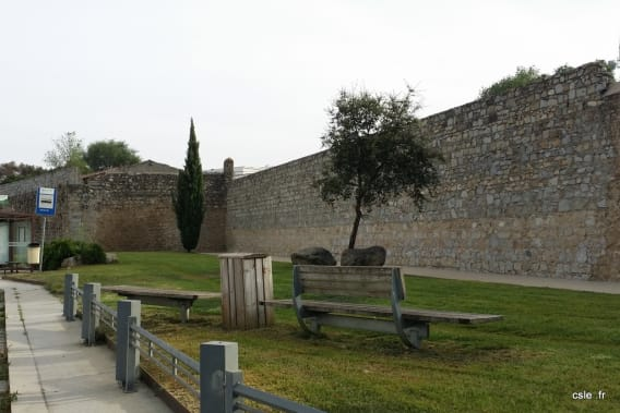 Evora Portugal (3)
