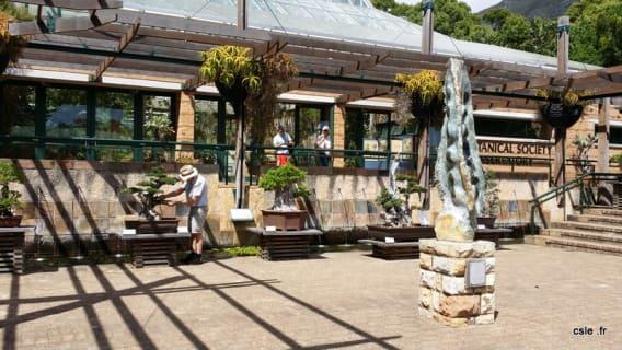 jardin botanique kirstenbosch