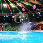 Dubai Dolphinarium Promo Codes & Coupons