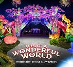 Dubai Garden Glow Promo Codes