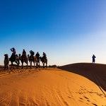 Desert Safari Dubai Promo Codes & Coupons