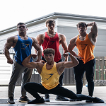 Gym Shark Promo Codes & Coupons