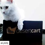 Desertcart Promo Code