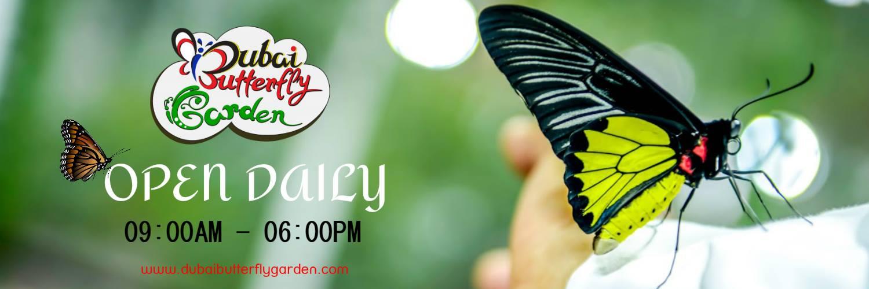 Dubai Butterfly Garden Promo Codes.jpg