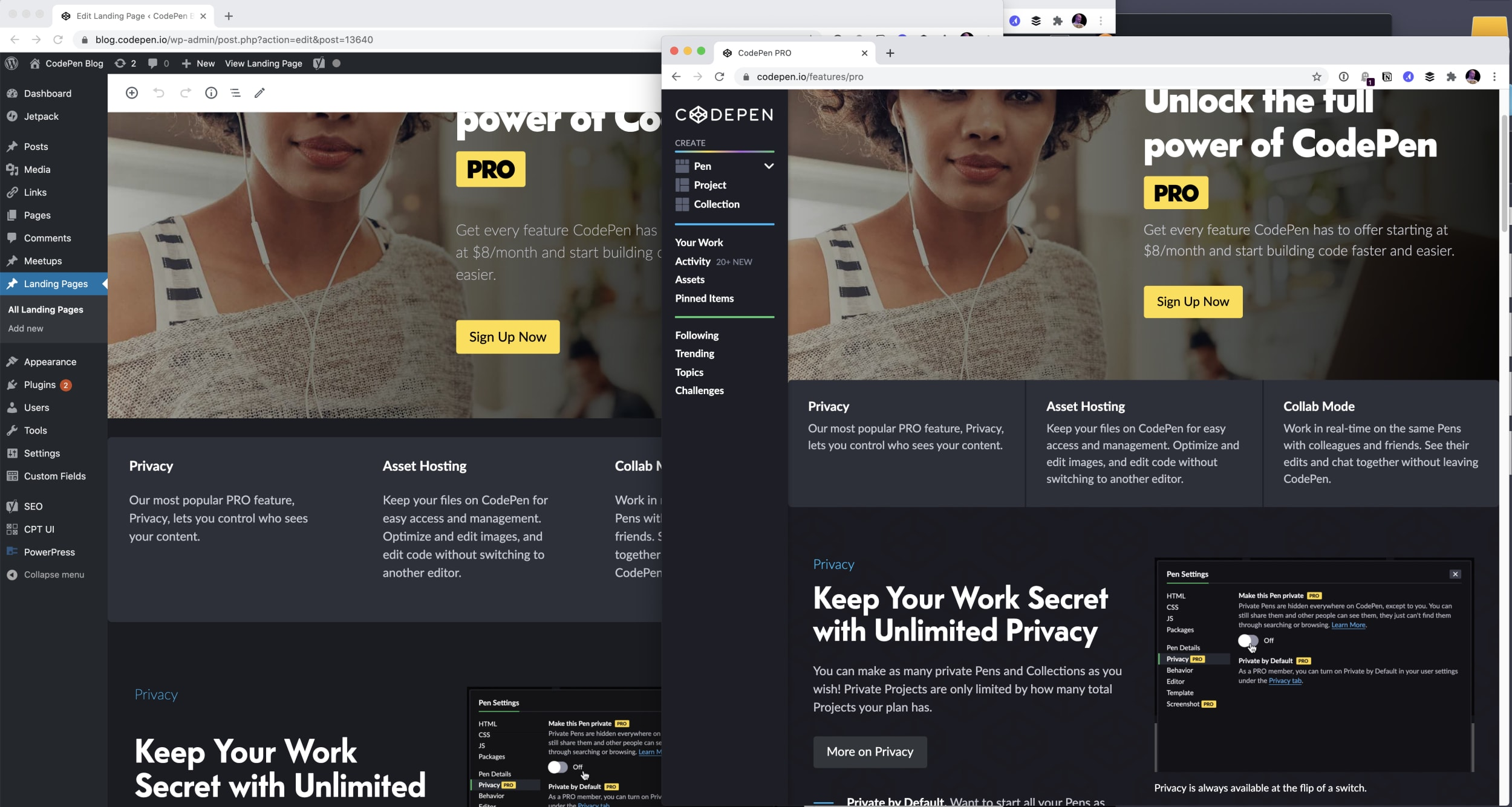 WordPress on the left, Landing Page on Right looking almost identical