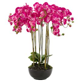 miaVILLA - Kunstpflanze Daphne, mit...