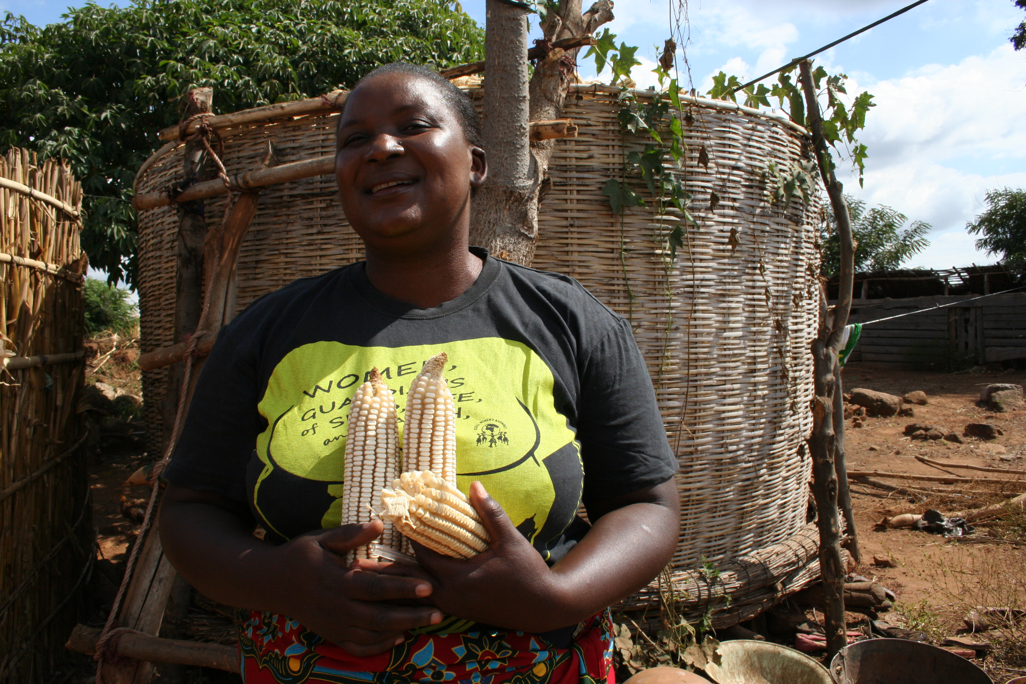 Farmer Alice Kachere showing maize cobs of this year full granaries, Malawi