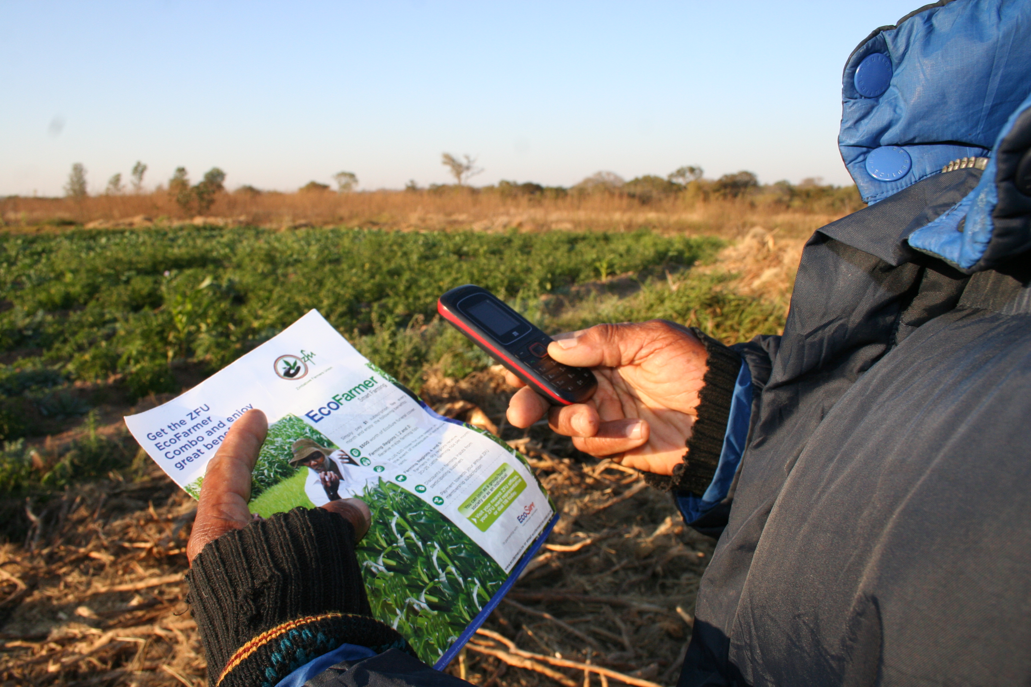 Smallholder farmers in Zimbabwe can benefit from real time weather information and weather index insurance through the ZFU-Ecofarmer Combo bundle