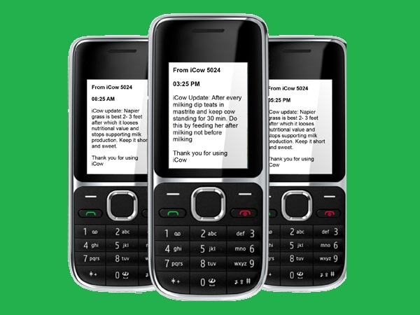 iCow is designed for the most basic feature phones and is available in different languages depending on the county of deployment. In Kenya and Tanzania it is available in English and Kiswahili, in Ethiopia in Oromiffo, Amharic and Tigringnia