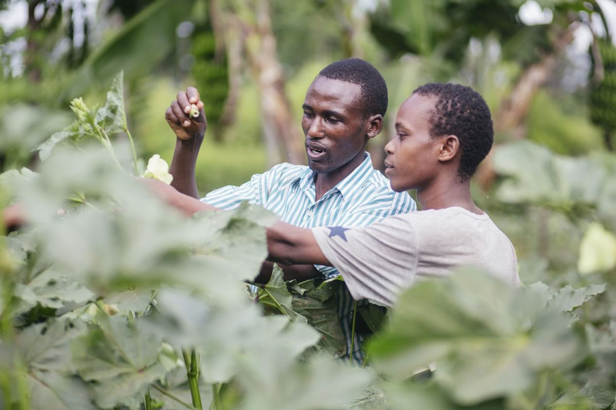Agricultural data systems to transform smallholder farming
