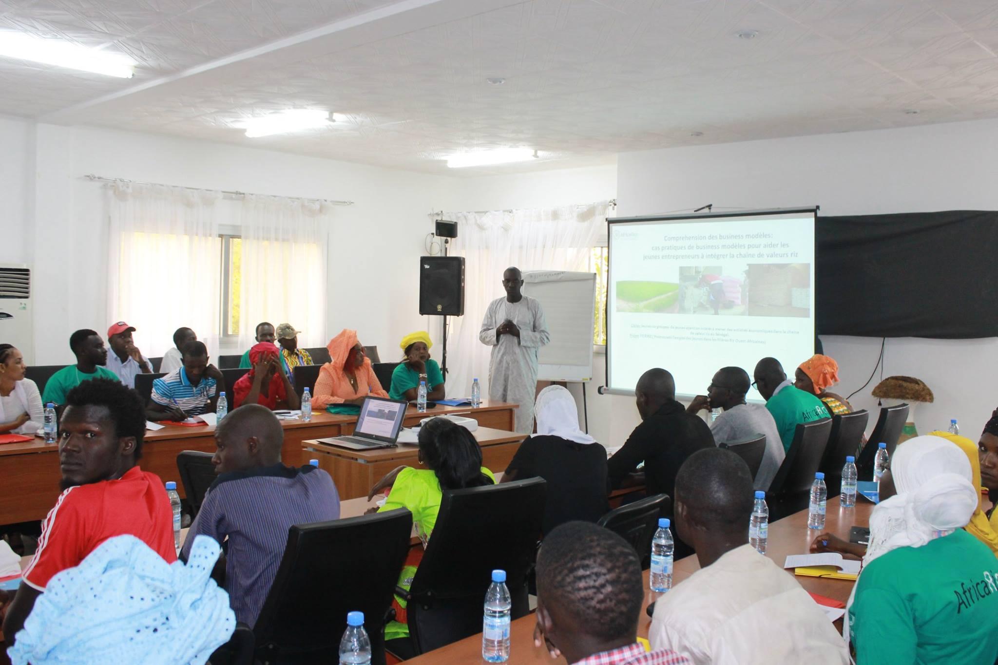 AfricaRice mobilisation workshop in July 2018, Saint-Louis, Senegal