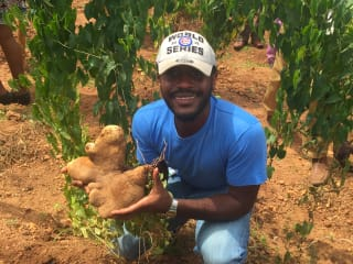 As hydroponic and aeroponic systems become increasingly accessible, Okocha Jr. explains that young people no longer need large areas of land to generate wealth from agriculture