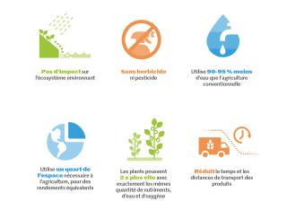 Avec 80 % d'une population mondiale de 9,7 milliards qui vivront en zone urbaine d'ici 2050, la capacité de cultiver dans des petits espaces – avec des systèmes d'hydroponie et d'aquaponie – devient de plus en plus cruciale. Source : Traders Hill and HydroponicMicroFarms