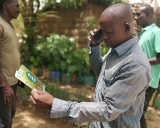 OKO insurance is distributing index-based crop insurance directly to farmers via mobile phones