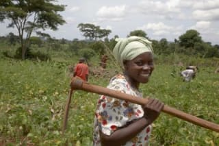 e-adaptation to climate change in Malawi