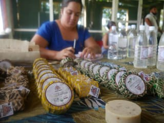 In order to meet the market demand for coconut products in Samoa, a local NGO has created a database to record an accurate count of the availability of goods