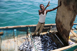 Foreign vessels catch three times more than Somali fishers