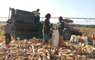 In the absence of formal credit, agricultural enterprises across ACP countries are turning to crowdfunding to kick start their businesses