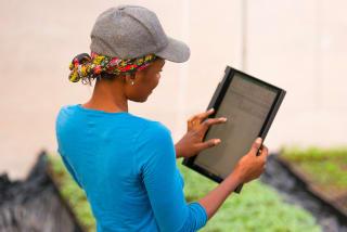 Malgré de nombreux obstacles, les femmes entrepreneurs deviennent de plus en plus visibles en Afrique en donnant de l'envergure à leurs entreprises.
