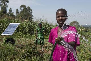 Avec un ensoleillement important toute l'année, la plupart des pays ACP pourraient profiter d'installations photovoltaïques et d'autres énergies renouvelables.